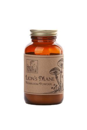 lion's mane medicinal mushroom
